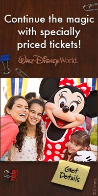 Walt Disney World specially priced tickets image